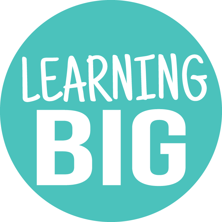 Learning BIG
